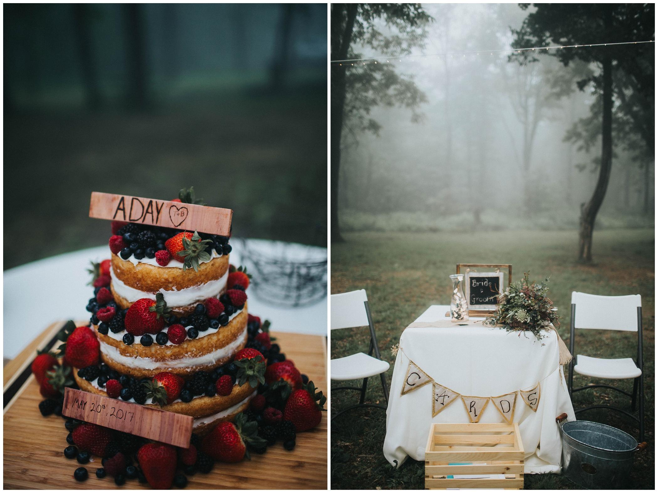 The Johnsons Photo Foggy Mount Magazine Arkansas Wedding Cake Details